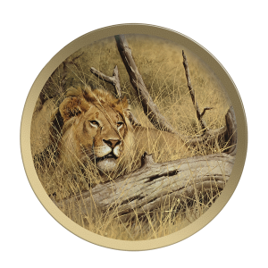 Lion In Wait - Collectable Plate by Guy Coheleach Lion In Wait  Coffee Table Books  Collectable Plates
