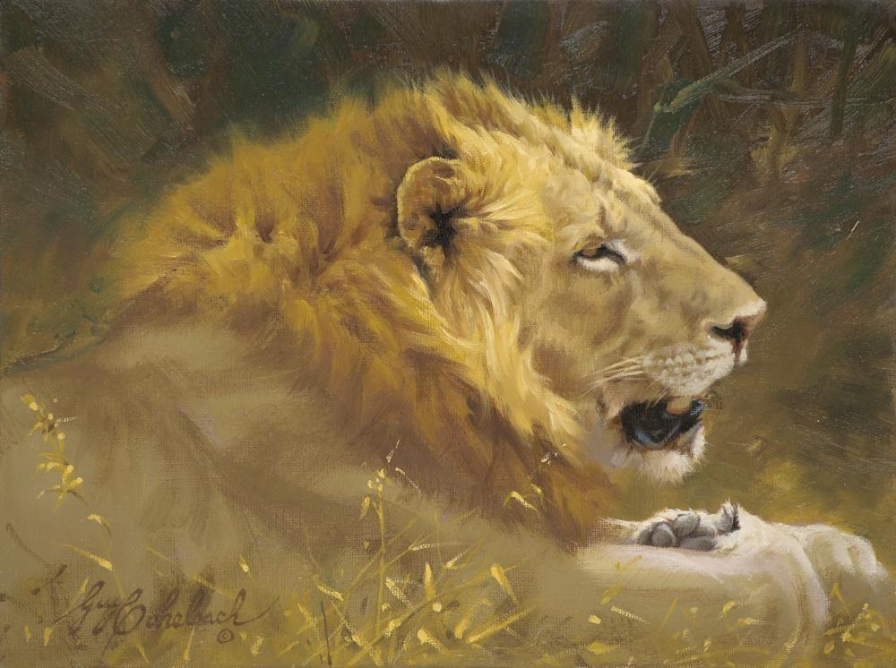 """""""Lion Portrait""""  -  9"""" x 12"""" """"Lion Portrait"""" - Lions  Lion Art  Lion Paintings"""