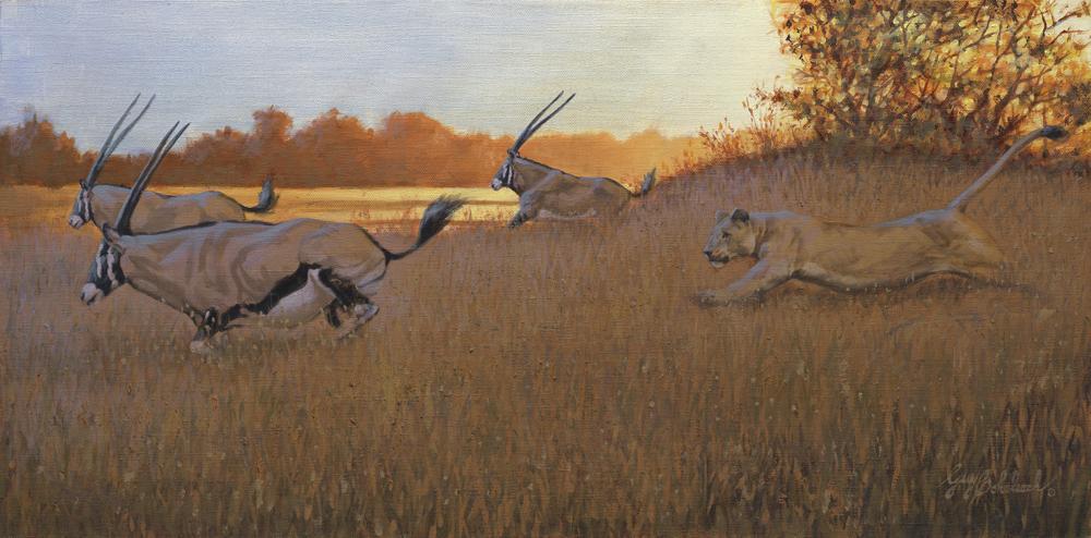 """Lioness / Gemsbok""  -  15"" x 30"" ""Lioness / Gemsbok"" - Lions  Lion Art  Lion Paintings"