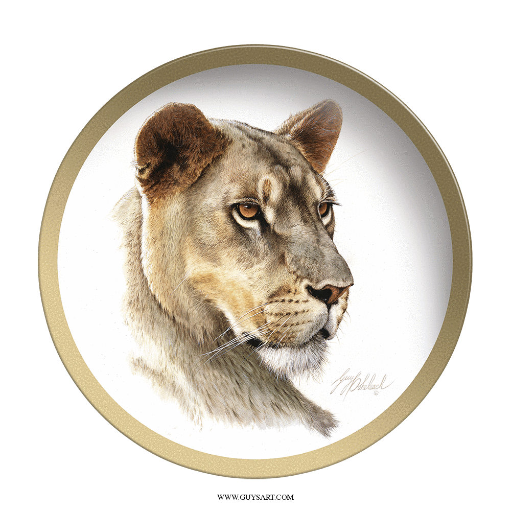 Lioness Head Plate- Collectable Plate by Guy Coheleach -