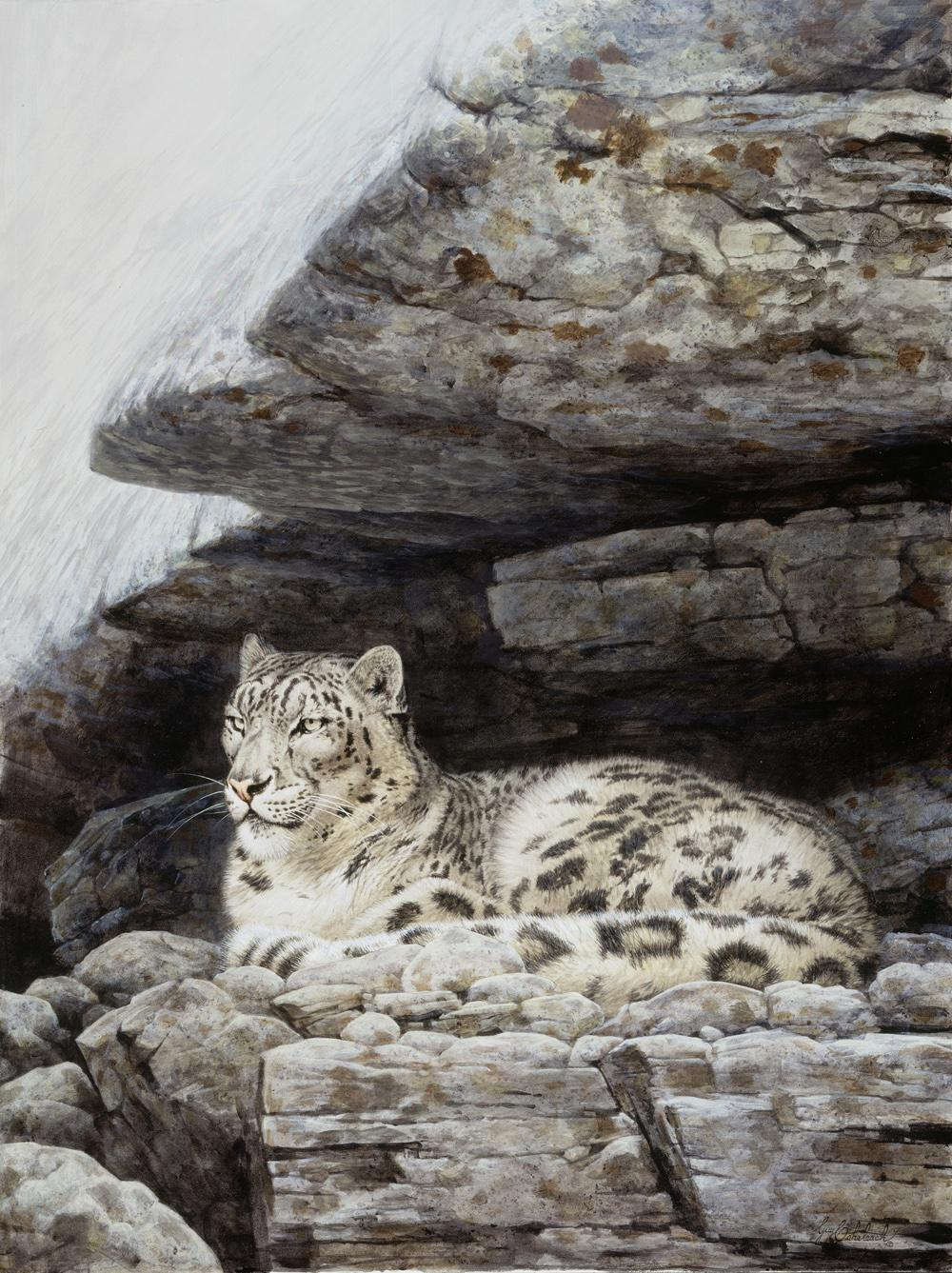 """Male Snow Leopard""   -  40"" x 30"" ""Male Snow Leopard"" - Leopards  Leoparp Paintings  Leopard Art"