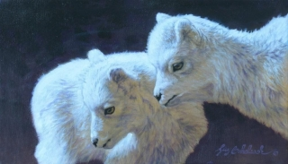 """""""Mini Mountain Goats""""   -  8"""" x 14"""" """"Mini Mountain Goats"""" - American Game  American Big Game  American Prey Animals"""