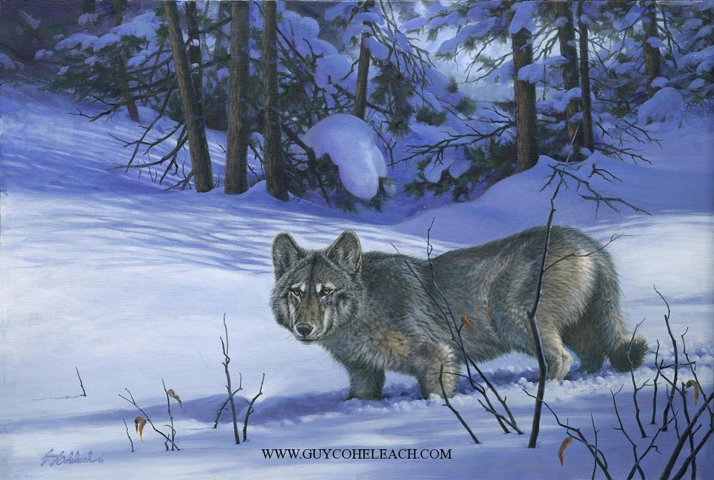 """Moonlight Wolf""  -  24"" x 36"" ""Moonlight Wolf"" - Canine  Wild Canine Paintings  Wolf and Fox Artwork"