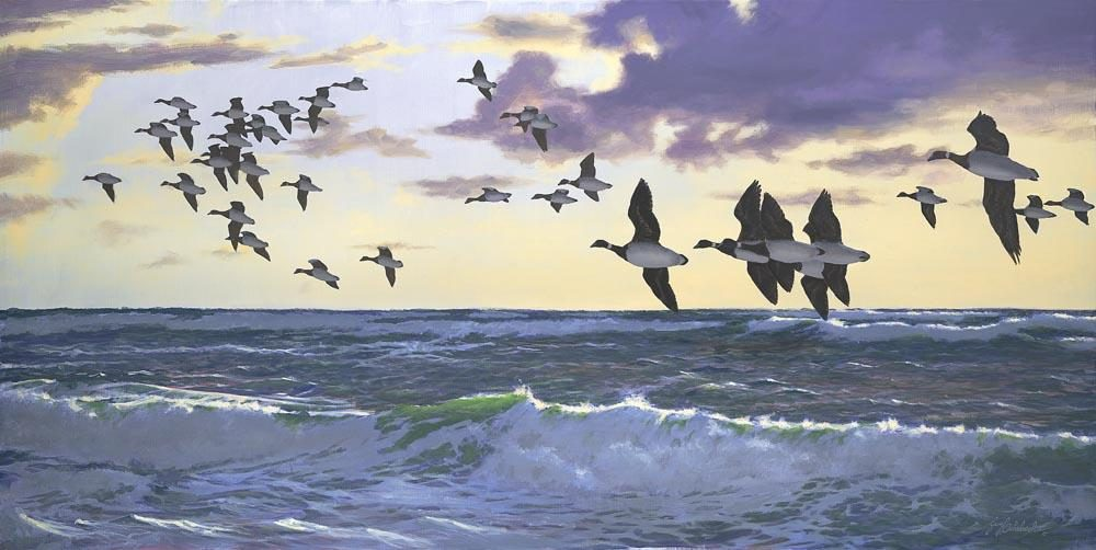 """Morning Flight Brant""   -  30"" x 60"" ""Morning Flight Brant""  - Water Birds  Waterfowl Paintings  Waterbird Paintings"