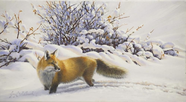 """Morning Scent""  -  11"" x 20"" ""Morning Scent"" - Canine  Wild Canine Paintings  Wolf and Fox Artwork"