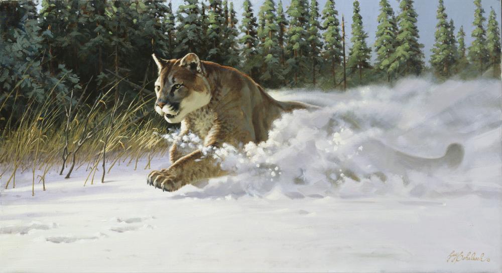 """Mountain Rush"", Puma  - 18"" x 36"" ""Mountain Rush"", Puma - American Cats  American wild cats  Wild Felines of America"
