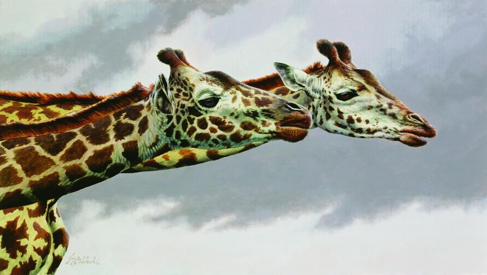 """Neck & Neck"" <BR>12"" x 21"" ""Neck & Neck"" - African Game  African Game Paintings  Plains Game Art"
