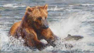 """""""Oops"""" Brown Bear  -  8"""" x 14 """"Oops"""" Brown Bear - American Game  American Big Game  American Prey Animals"""