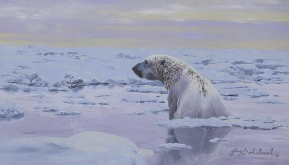 """Polar Swim"" Sketch  -  8"" x 14"" ""Polar Swim"" - American Game  American Big Game  American Prey Animals"