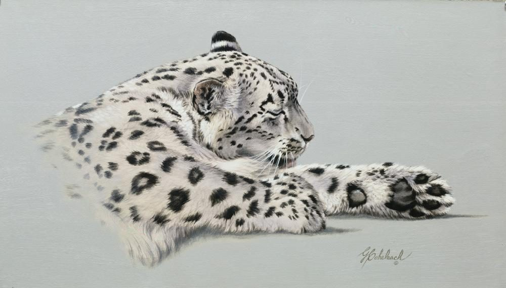 """Preening"" - Snow Leopard ""Preening"" - Portraits  Big Cat Heads  Cat Head Paintings"