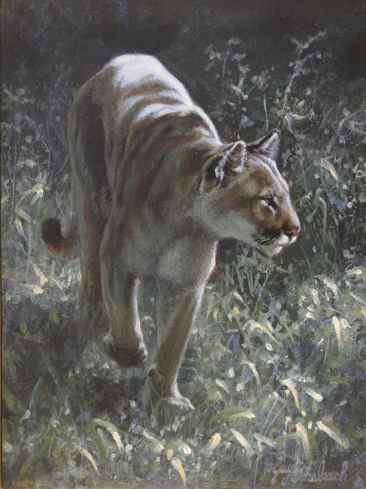 """Puma Patrol""  -  9"" x 12"" ""Puma Patrol"" - American Cats  American wild cats  Wild Felines of America"