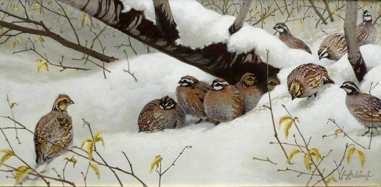 """Quail Shelter 2""  - 12"" x 24"" ""Quail Shelter 2"" - Birds  Song Birds  Game Birds"