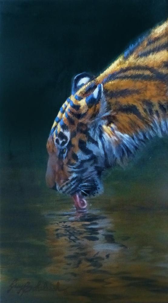 """Quick Drink"" Sketch - 14"" x 8"" ""Quick Drink""  - Tigers  Bengal Tiger  Siberian Tiger"
