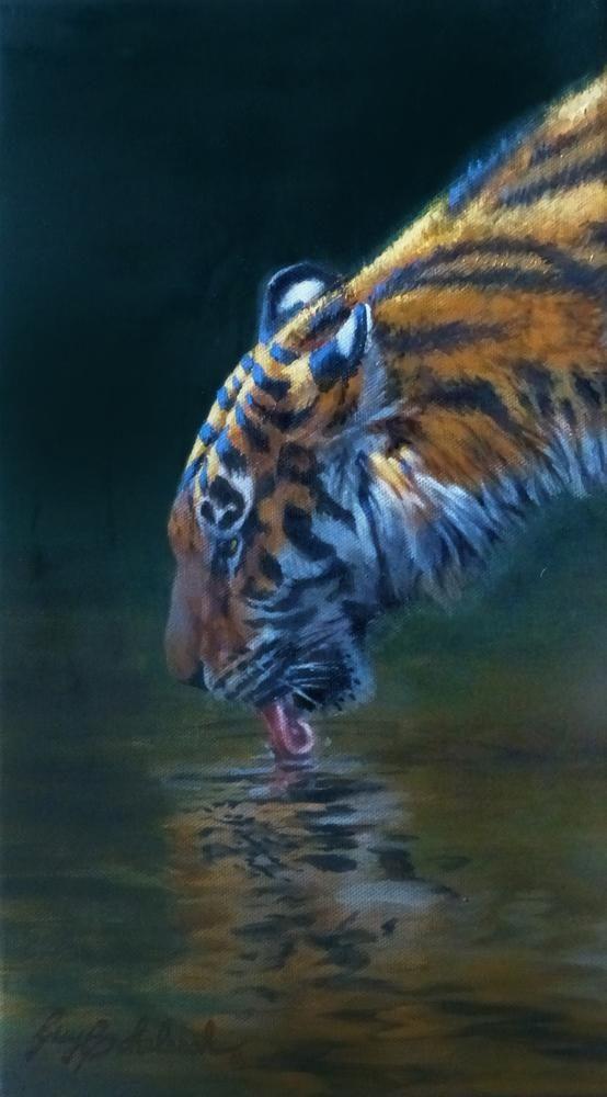 """Quick Drink"" Sketch - 14"" x 8"" ""Quick Drink""  - Tigers  Bengal Tiger  Siberian Tiger"