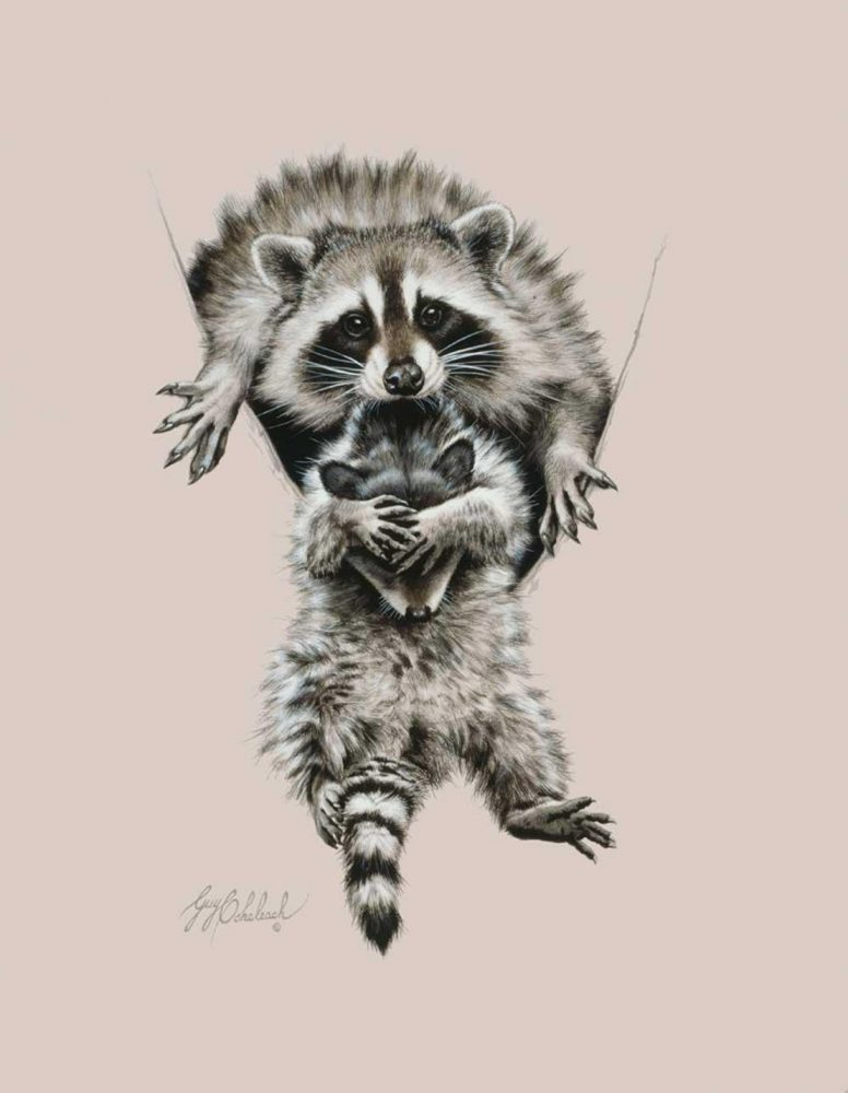 """""""Raccoon Mother & Cub""""  -  20"""" x 14"""" """"Raccoon Mother & Cub"""" - Critters  Small Game Paintings  Small Animals in Art"""