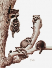 """""""Raccoons""""  -  26"""" x 20"""" """"Raccoons"""" - Critters  Small Game Paintings  Small Animals in Art"""