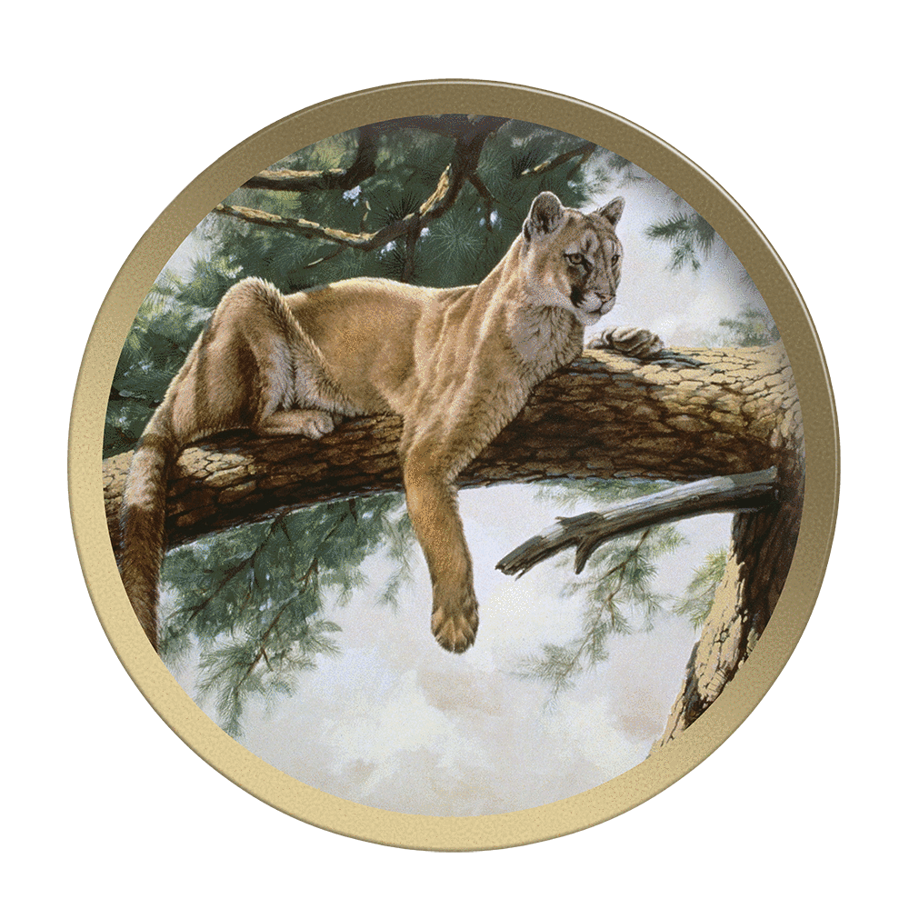 Rocky Mountain Lion - Collectable Plate by Guy Coheleach Rocky Mountain Lion  Coffee Table Books  Collectable Plates