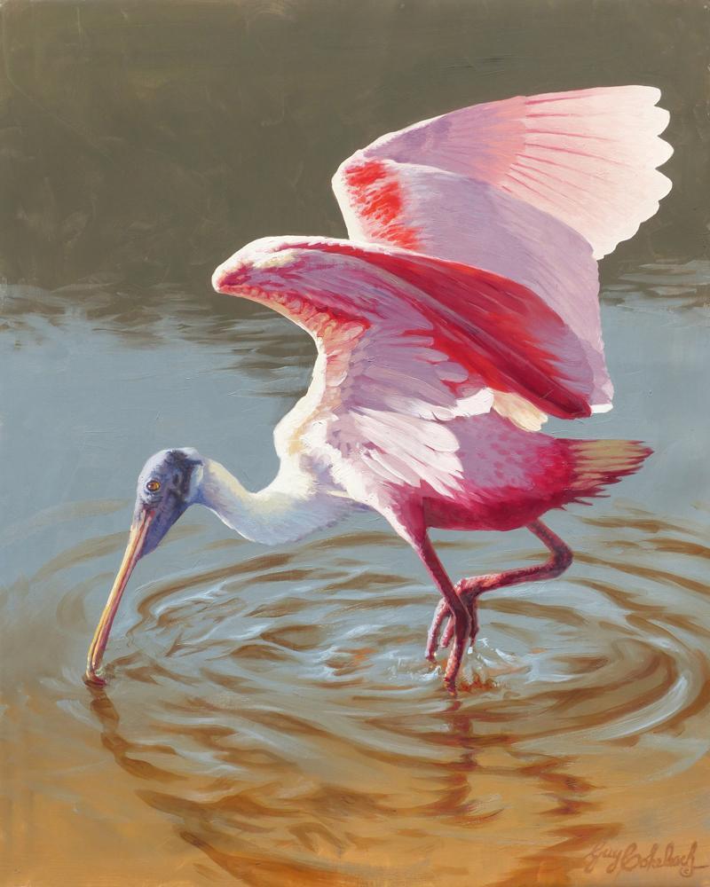 """""""Roseatte Spoonbill"""" - Breeding Plumage  -  20"""" x 16"""" """"Roseatte Spoonbill"""" - Water Birds  Waterfowl Paintings  Waterbird Paintings"""