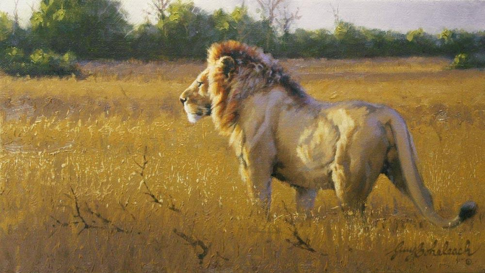 """Selous Dusk""  -  8"" x 14"" ""Selous Dusk"" - Lions  Lion Art  Lion Paintings"