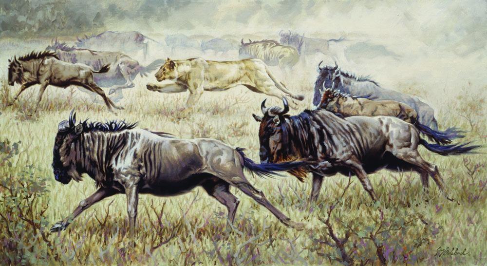 """Serengeti Chase""  -  24"" x 44"" ""Serengeti Chase"" - Lions  Lion Art  Lion Paintings"