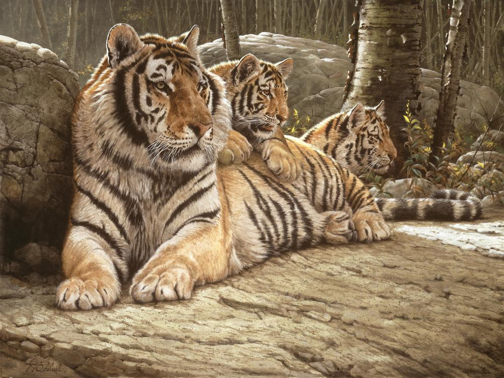 """Siberian Summer""  -  30"" x 40"" ""Siberian Summer"" - Tigers  Bengal Tiger  Siberian Tiger"
