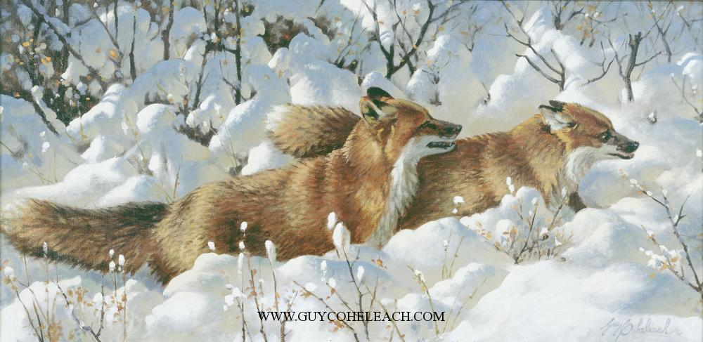 """Side By Side""  -  12"" x 24"" ""Side By Side"" - Canine  Wild Canine Paintings  Wolf and Fox Artwork"