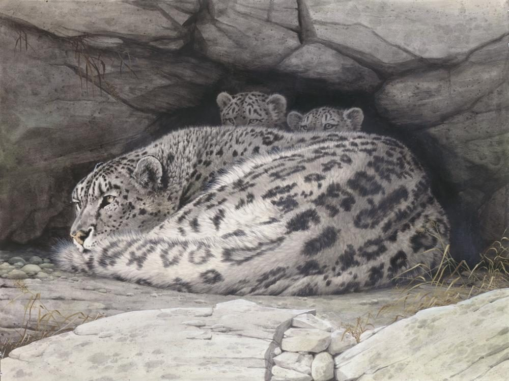 """Snow Leopard Mother & Cubs""  -  28"" x 38"" ""Snow Leopard Mother & Cubs"" - Leopards  Leoparp Paintings  Leopard Art"