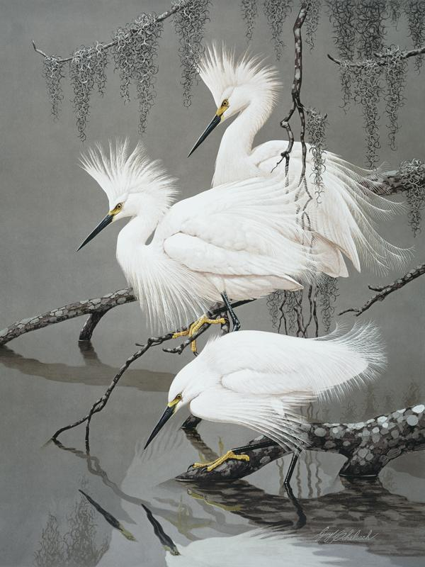 """Snowy Egrets""  -  34"" x 27"" ""Snowy Egrets"" - Water Birds  Waterfowl Paintings  Waterbird Paintings"