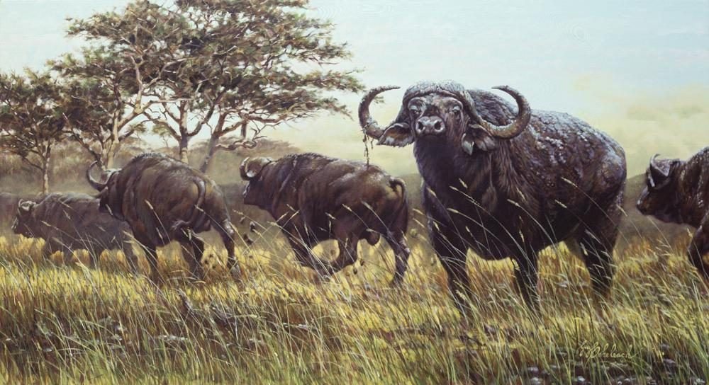 """Spooked Cape Buffalo""<BR>24 X 44 ""Spooked Cape Buffalo"" - African Game  African Game Paintings  Plains Game Art"