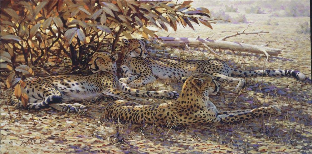"""""""Spots N' Dots""""  -36"""" x 72"""" """"Spots N' Dots"""" - Cheetahs  Cheetah  cheeta"""