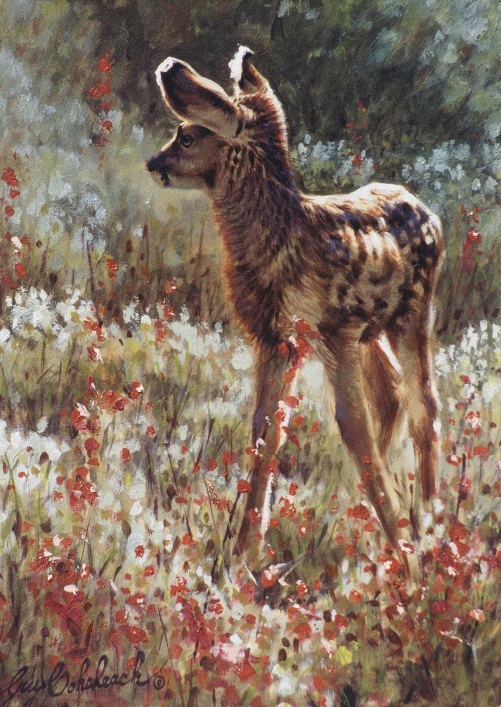 """Spring""   -  9"" x 12"" ""Spring"" - American Game  American Big Game  American Prey Animals"