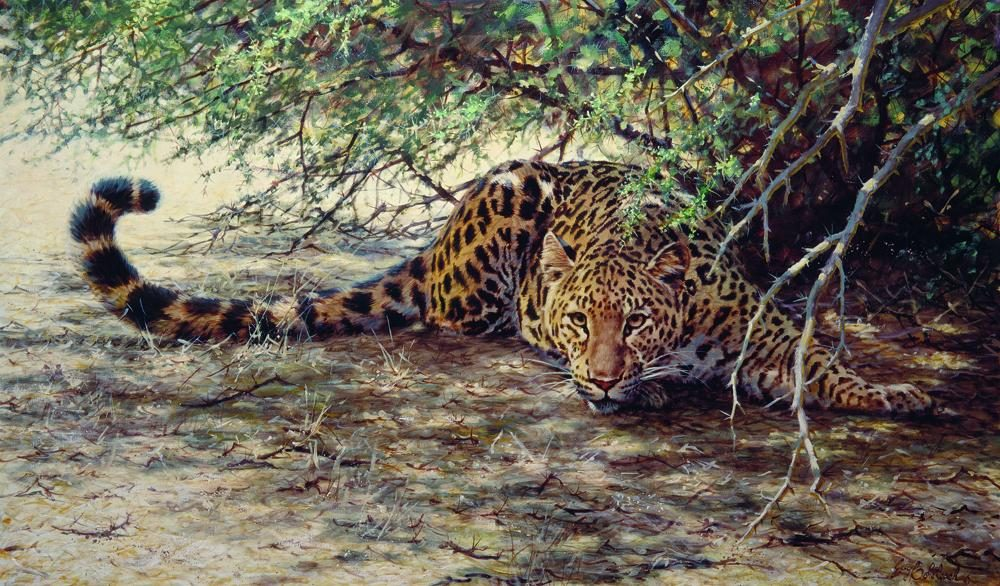 """Sunspots""  -  30"" x 40"" ""Sunspots"" - Leopards  Leoparp Paintings  Leopard Art"