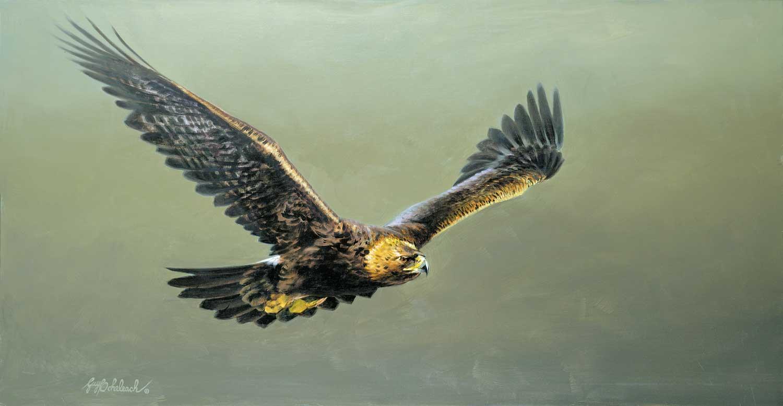 """""""Swift Pursuit""""  -  24"""" x 44"""" """"Swift Pursuit""""  Birds of Prey  Raptors"""