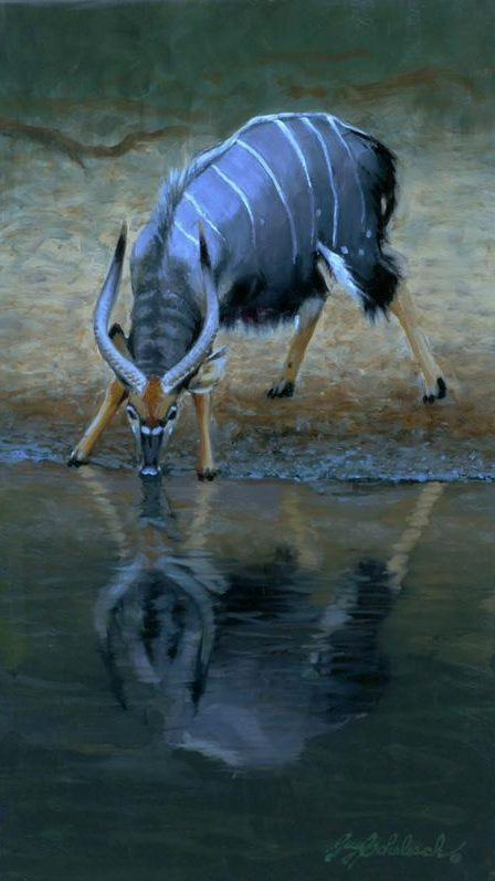 """Thirsty Nyala"" Sketch  <BR>14 X 8 ""Thirsty Nyala""  - African Game  African Game Paintings  Plains Game Art"