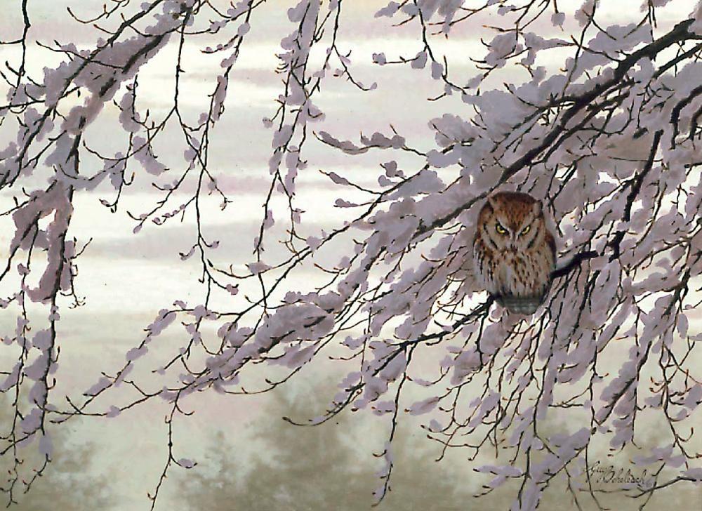 """""""Tudoe Pt. Screech Owl""""   -  24"""" x 30"""" """"Tudoe Pt. Screech Owl"""" - Owls  Owl Paintings  Owl Artwork"""