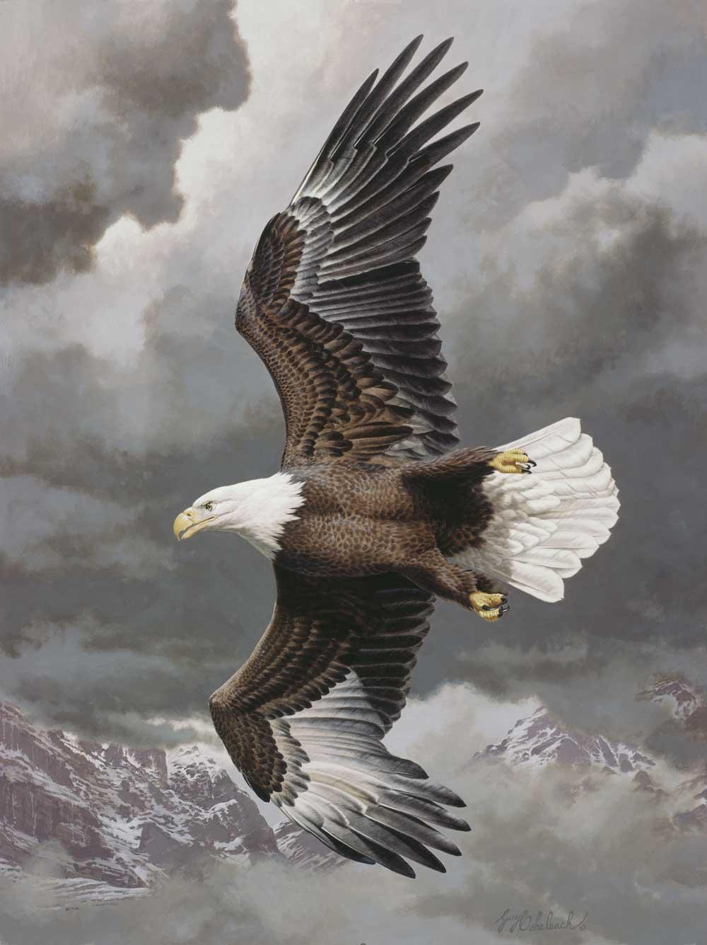 """Vanishing Grandeur""  -  30"" x 40"" ""Vanishing Grandeur""  Birds of Prey  Raptors"