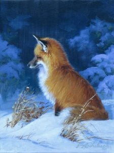"""Waiting Out Mr. Mouse"" Sketch  -  12"" x 9"" ""Waiting Out Mr. Mouse"" - Canine  Wild Canine Paintings  Wolf and Fox Artwork"