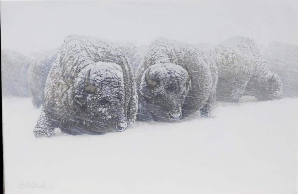 """Winter Whiteout Bison""  -  24"" x 36"" ""Winter Whiteout Bison"" - American Game  American Big Game  American Prey Animals"