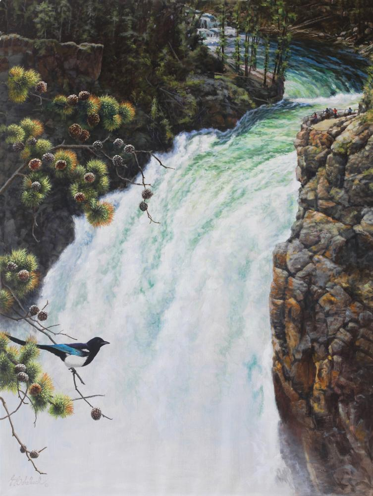 """YELLOWSTONE UPPER FALLS, BLACK BILLED MAGPIE "" <BR>48"" x 36""<BR> ""YELLOWSTONE UPPER FALLS, BLACK BILLED MAGPIE ""  Song Birds  Game Birds"