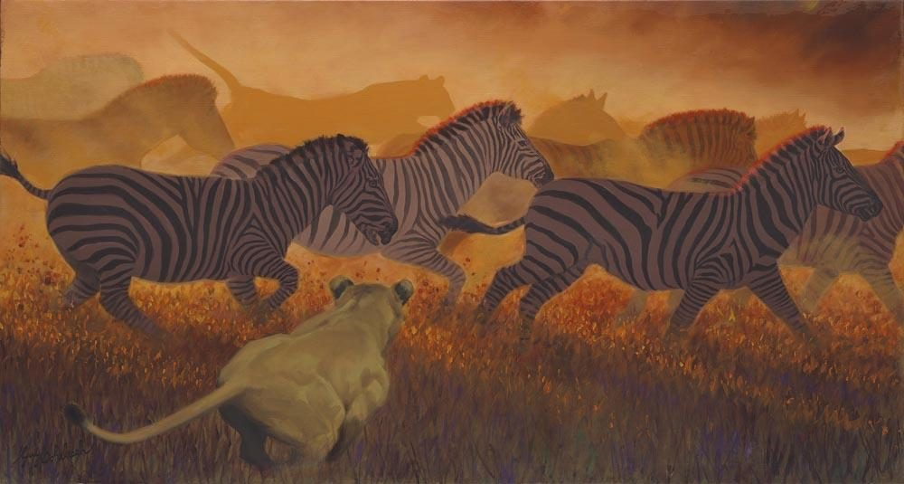 """Zebra Chase""   -  26"" x 48"" ""Zebra Chase"" - Lions  Lion Art  Lion Paintings"