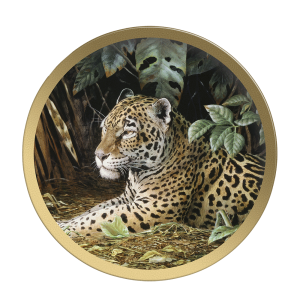 Jungle Cover Jaguar - - Collectible Plate by Guy Coheleach